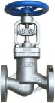 bellow_globe_valve_fig241_g